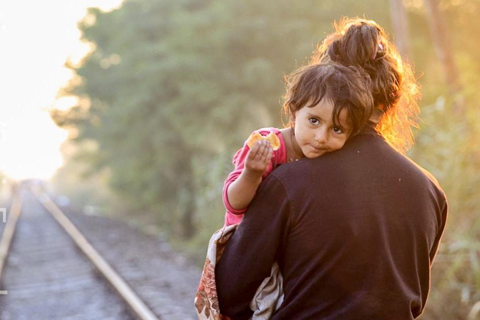 Uchodźcy, imigranci